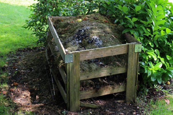compost bin on top of soil