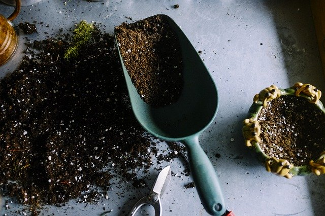 compost for potted plants