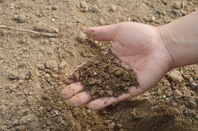 garden soil adding compost
