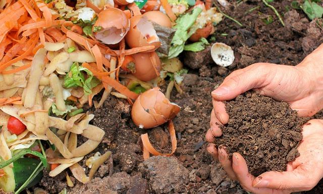 compost ingredient tips